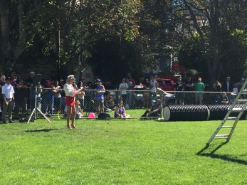Working dogs at Bark in the Park, What it's really like to live in San Francisco, Living in San Francisco, Expat San Francisco, San Francisco as a Brit, San Francisco Living, Expat life, Expatriate in San Francisco