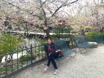 Cherry Blossom at Tivoli Gardens