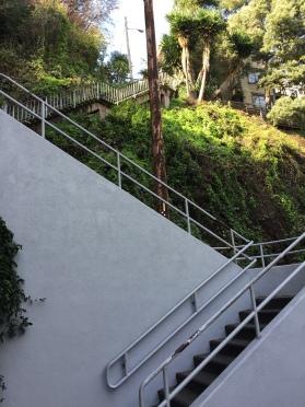 The Filbert Steps