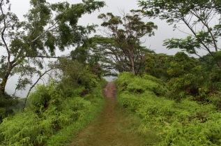 Kuilau Ridge, Kauai, Hawaii, Na Pali Coast, Kauai, Hawaii, Hiking the Na Pali Coast, USA Travel, USA Travel Blog, Hawaii Garden Island, Hawaii Travel, Kauai, Thing to do in Kauai, Walking in Kauai, Hawaii Highlights, Must do things in Hawaii