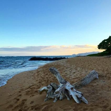 Beach at Wailua, Na Pali Coast, Kauai, Hawaii, Hiking the Na Pali Coast, USA Travel, USA Travel Blog, Hawaii Garden Island, Hawaii Travel, Kauai, Thing to do in Kauai, Walking in Kauai, Hawaii Highlights, Must do things in Hawaii