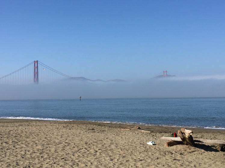 Chrissy Field Beach, San Francisco